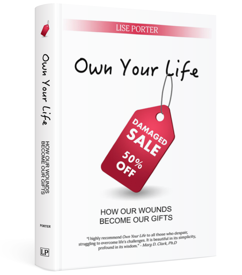 Own Your Life by Lise Porter
